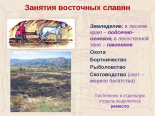 Занятия восточных славян Земледелие: в лесном краю – подсечно-огневое, в лес