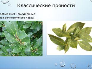 Классические пряности Лавровый лист - высушенные листья вечнозеленого лавра б