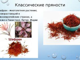 Классические пряности Шафран - многолетнее растение, произрастающей в южноевр
