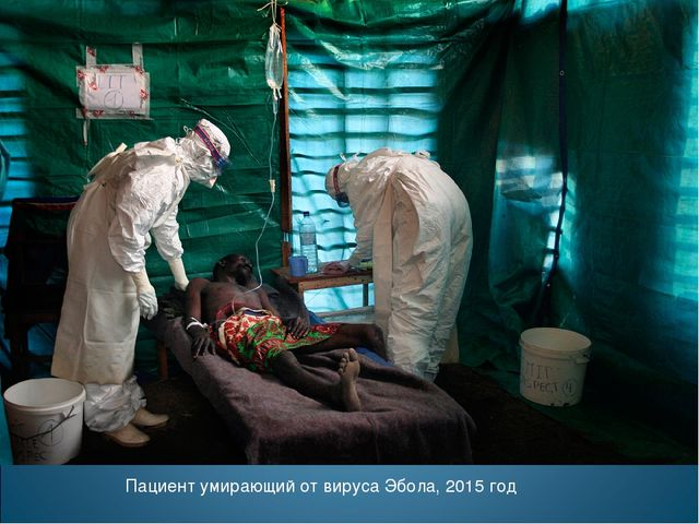 Пациент умирающий от вируса Эбола, 2015 год