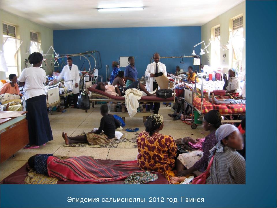 Эпидемия сальмонеллы, 2012 год. Гвинея