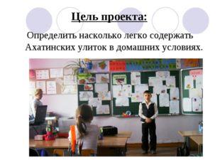 Цель проекта: Определить насколько легко содержать Ахатинских улиток в домашн