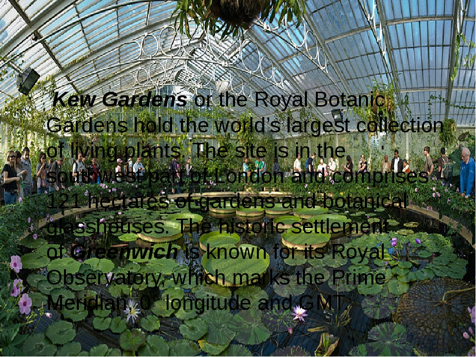 Kew Gardens or the Royal Botanic Gardens hold the world's largest collectio...
