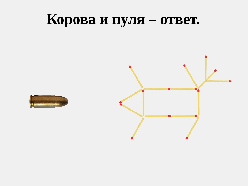 Корова и пуля – ответ.