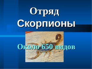 Скорпионы Отряд Около 650 видов