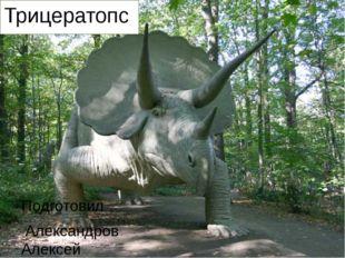 Трицератопс Подготовил Александров Алексей