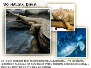 До наших дней все таки дожили некоторые динозавры. Это крокодилы, черепахи и
