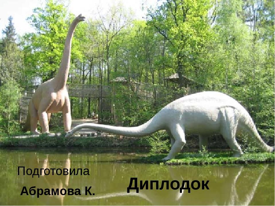 Диплодок Подготовила Абрамова К.