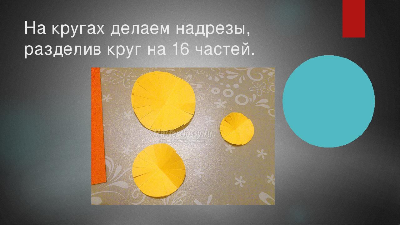 На кругах делаем надрезы, разделив круг на 16 частей.