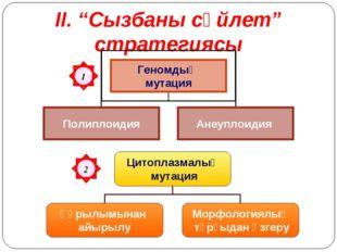 """ІІ. """"Сызбаны сөйлет"""" стратегиясы 1"""