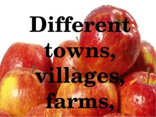 Different towns, villages, farms, schools, supermarkets, and other organizat