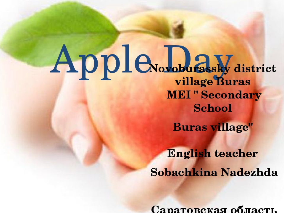 "Apple Day Novoburassky district village Buras MEI "" Secondary School Buras v..."