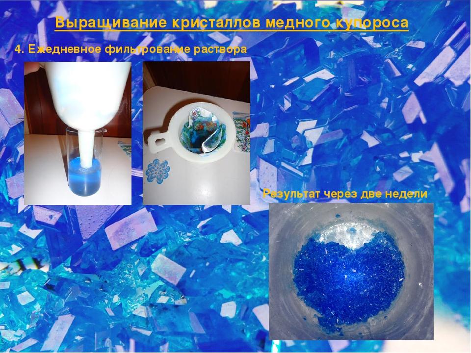 Выращивание кристаллов медного купороса 4. Ежедневное фильтрование раствора Р...