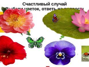 Счастливый случай Выбери цветок, ответь на вопросы Что общего в живой и нежив