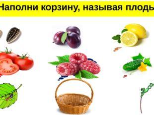 Наполни корзину, называя плоды семянка костянка померанец ягода многокостянка