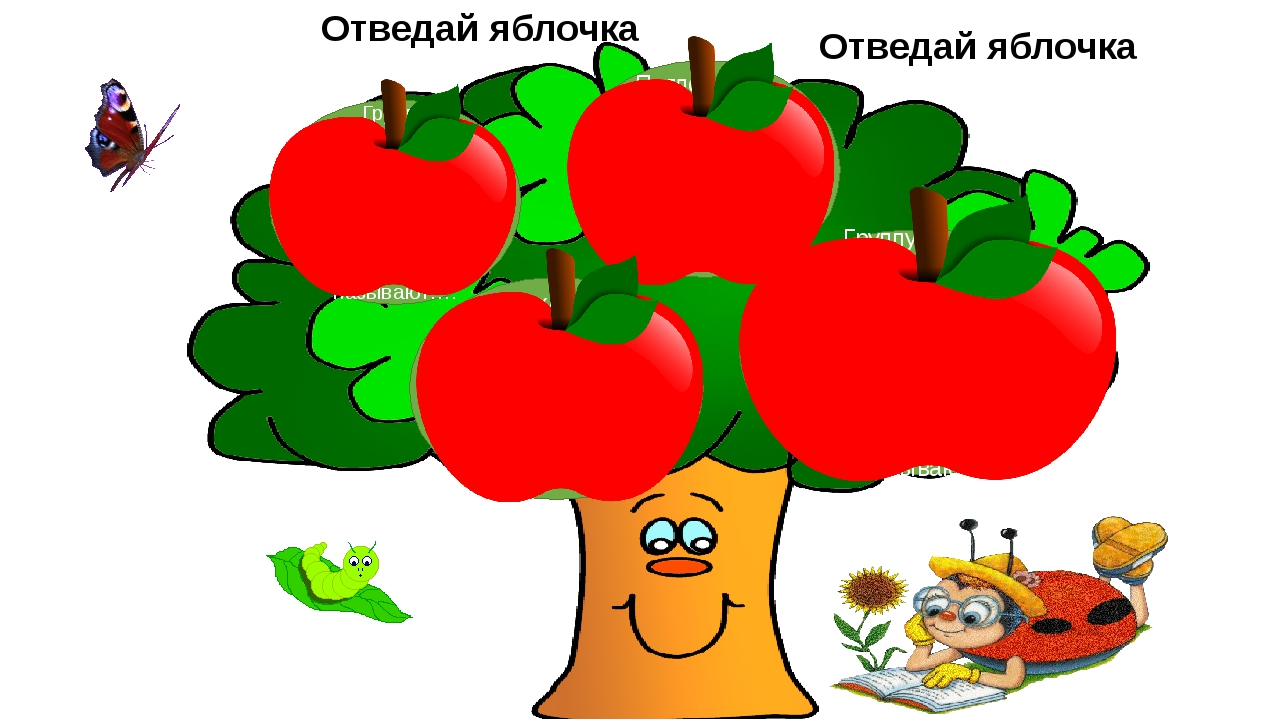 Группу связанных между собой органов, выполняющих общие функции, называют…....