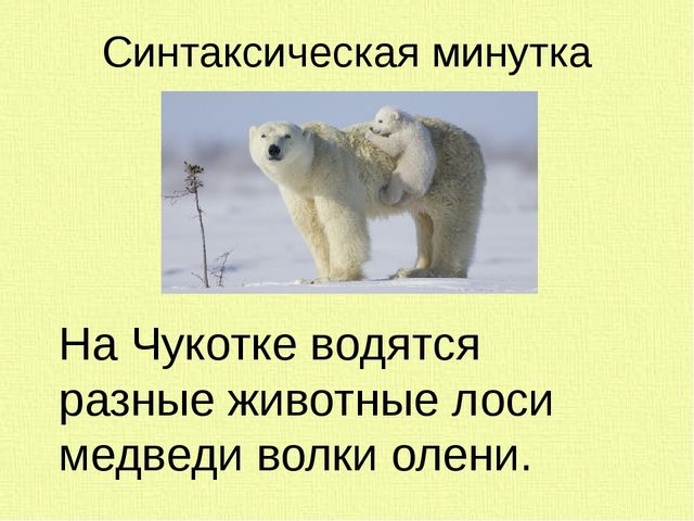 Синтаксическая минутка На Чукотке водятся разные животные лоси медведи волки...