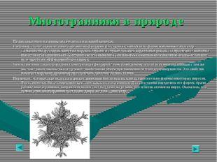 Многогранники в природе Правильные многогранники встречаются и в живой природ