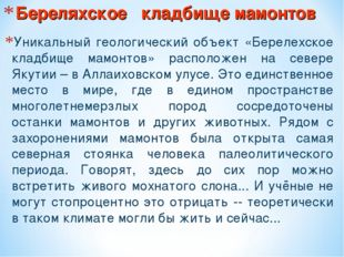Береляхское кладбище мамонтов Уникальный геологический объект «Берелехское кл