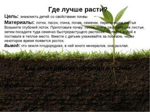 Где лучше расти? Цель: знакомить детей со свойствами почвы Материалы: лотки,