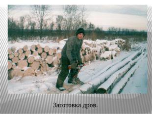 Заготовка дров.