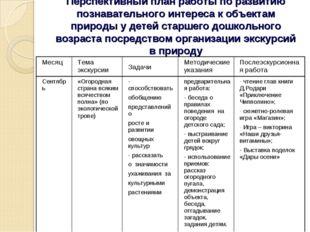 Перспективный план работы по развитию познавательного интереса к объектам при