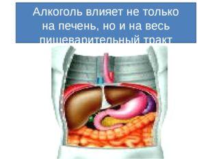 Алкоголь влияет не только на печень, но и на весь пищеварительный тракт