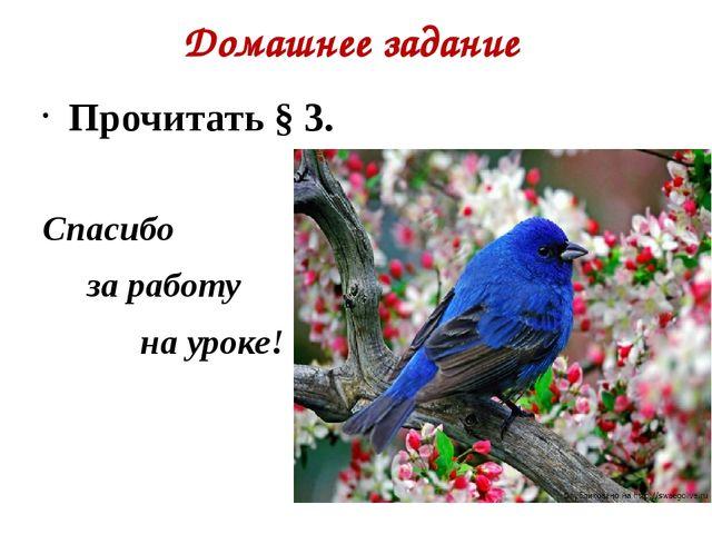 Домашнее задание  Прочитать § 3. Спасибо       за работу             на у...