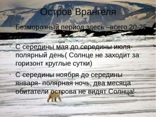 Остров Врангеля Безморозный период здесь –всего 20-25 дней С середины мая до