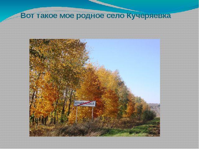 Вот такое мое родное село Кучеряевка