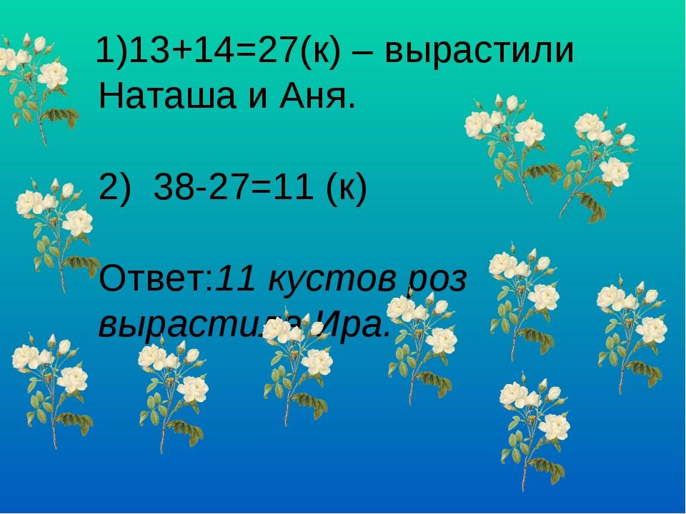 1)13+14=27(к) – вырастили Наташа и Аня. 2) 38-27=11 (к) Ответ:11 кустов роз...
