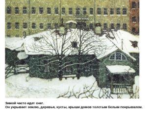 Зимой часто идет снег. Он укрывает землю, деревья, кусты, крыши домов толстым