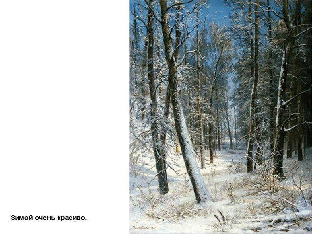 Зимой очень красиво.