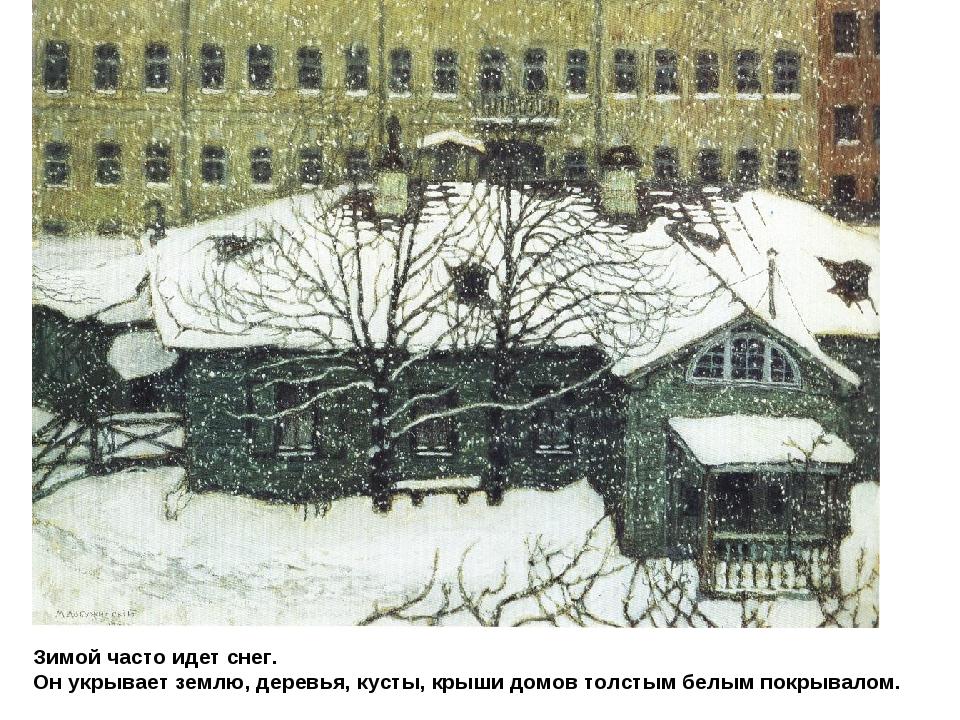 Зимой часто идет снег. Он укрывает землю, деревья, кусты, крыши домов толстым...