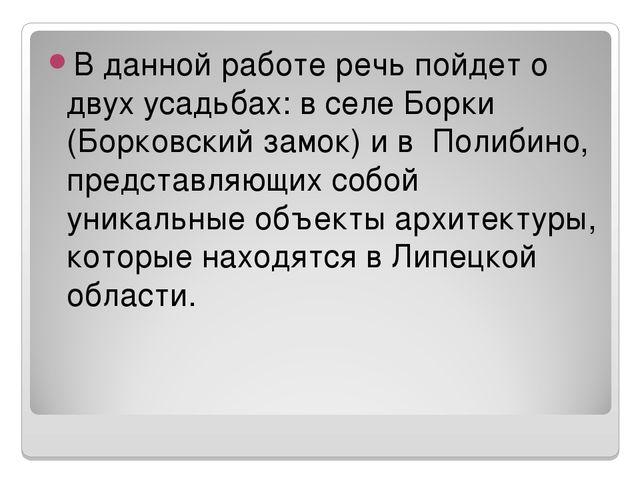 В данной работе речь пойдет о двух усадьбах: в селе Борки (Борковский замок)...