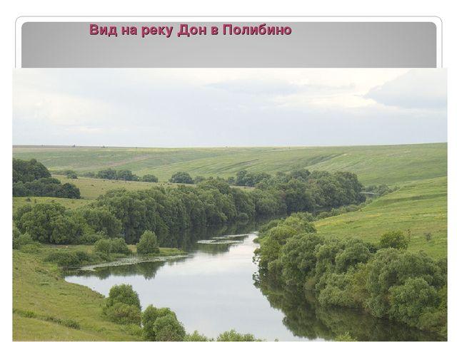 Вид на реку Дон в Полибино