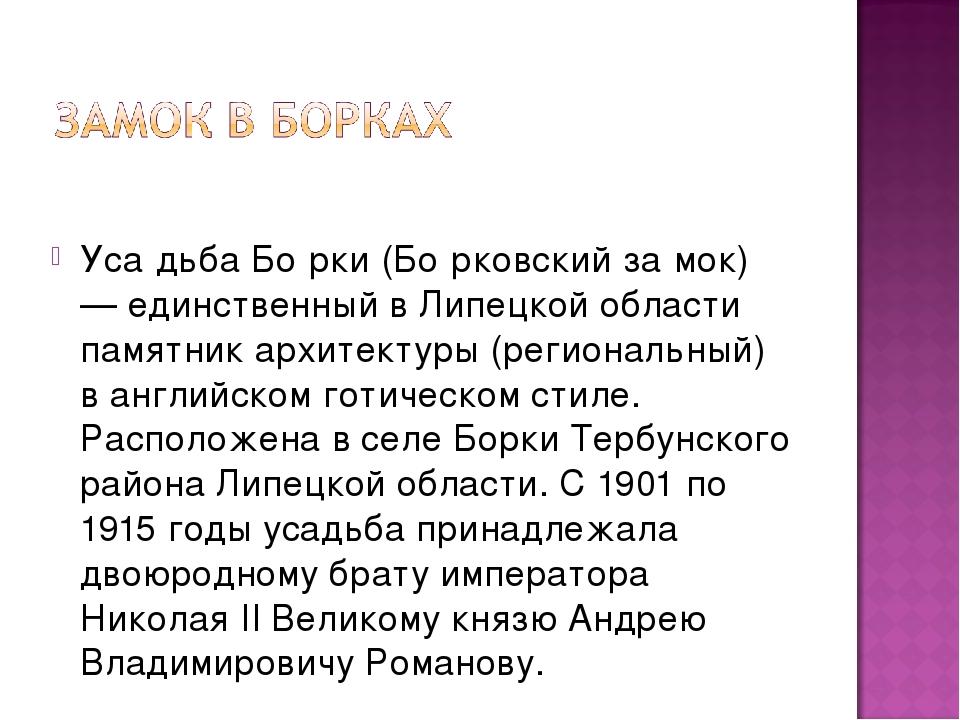 Уса́дьба Бо́рки (Бо́рковский за́мок) — единственный в Липецкой области памят...
