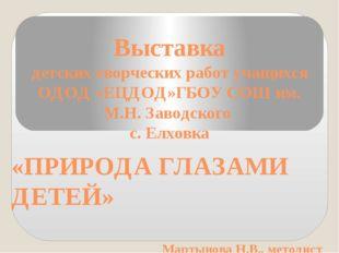 Выставка детских творческих работ учащихся ОДОД «ЕЦДОД»ГБОУ СОШ им. М.Н. Заво