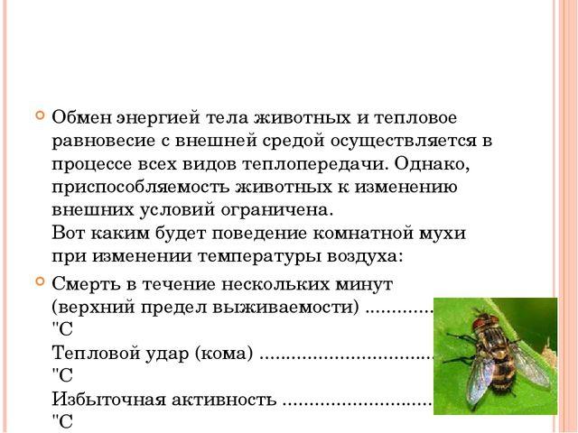Обмен энергией тела животных и тепловое равновесие с внешней средой осуществ...