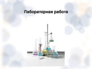 Лабораторная работа