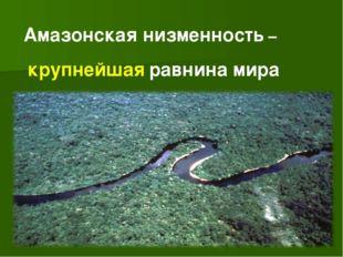 Амазонская низменность – крупнейшая равнина мира