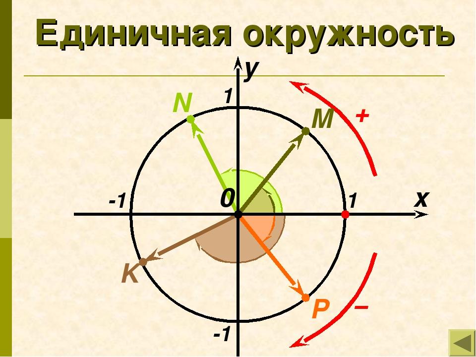 Единичная окружность x y 1 -1 -1 1 M N P K 0
