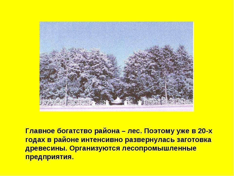 Главное богатство района – лес. Поэтому уже в 20-х годах в районе интенсивно...