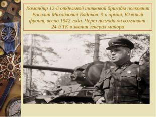 Командир 12-й отдельной танковой бригады полковник Василий Михайлович Баданов