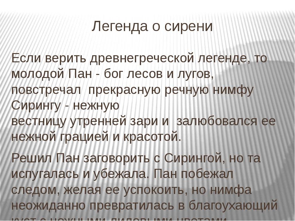 Легенда о сирени Если верить древнегреческой легенде, то молодой Пан - бог ле...