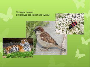 Человек, помни! В природе все животные нужны!
