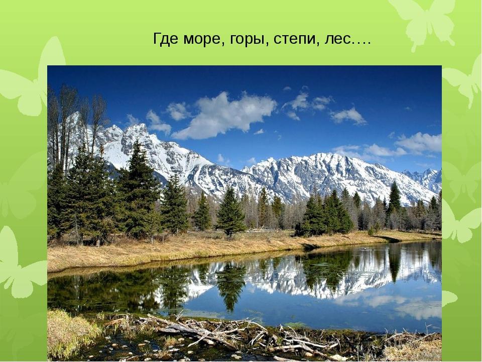 Где море, горы, степи, лес….