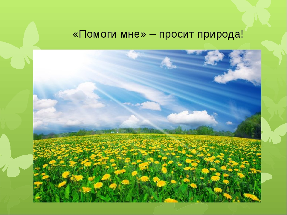 «Помоги мне» – просит природа!