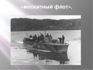 «москитный флот».