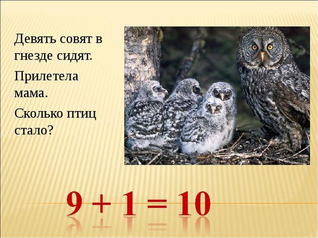 Девять совят в гнезде сидят. Прилетела мама. Сколько птиц стало?